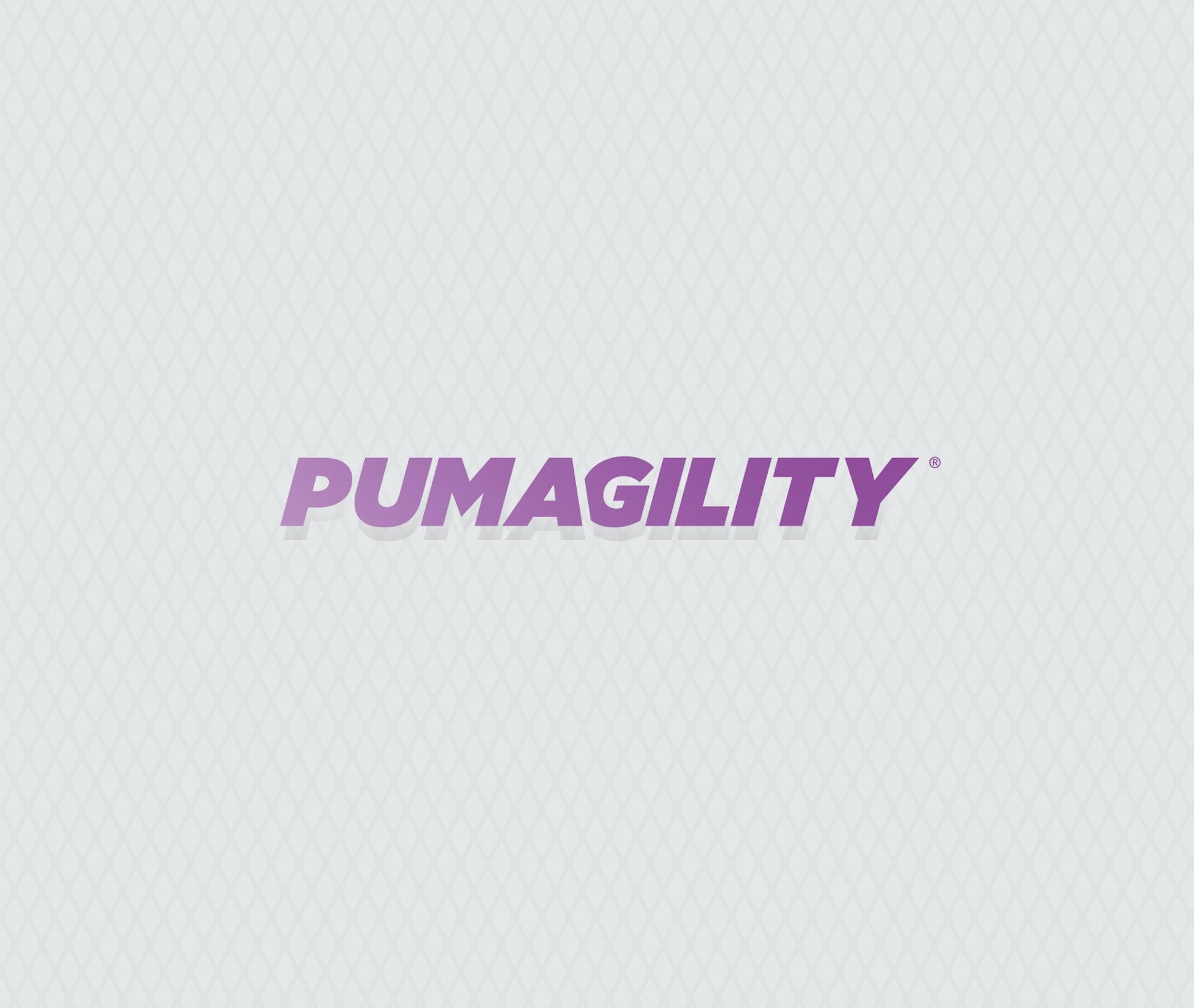 PUMA Branding and Ad Campaign Design